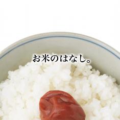 toppage/お米のはなし。